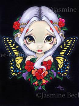 Impatiens Fairy