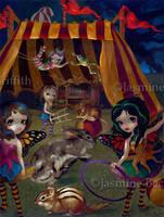 Fairy Circus by jasminetoad