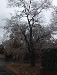 Ice Storm 6 by NovemberLilly