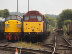 31466 and 40135