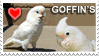 Goffin's Cockatoo Stamp by Nestly