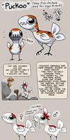 Puckoo - Species Guide