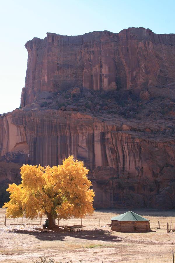 Navajo by TrentLarsonphoto