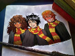 Harry, Ron and Hermione!