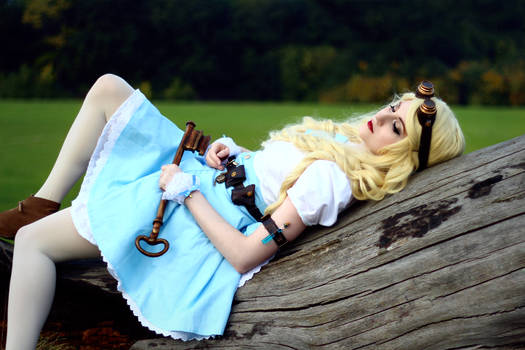 Steampunk Alice in Wonderland - 08