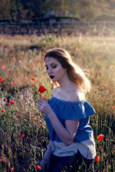 Queen of poppies