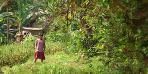 La fille en rouge (Bali) by Tepee