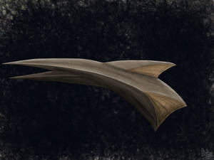 Starship concept