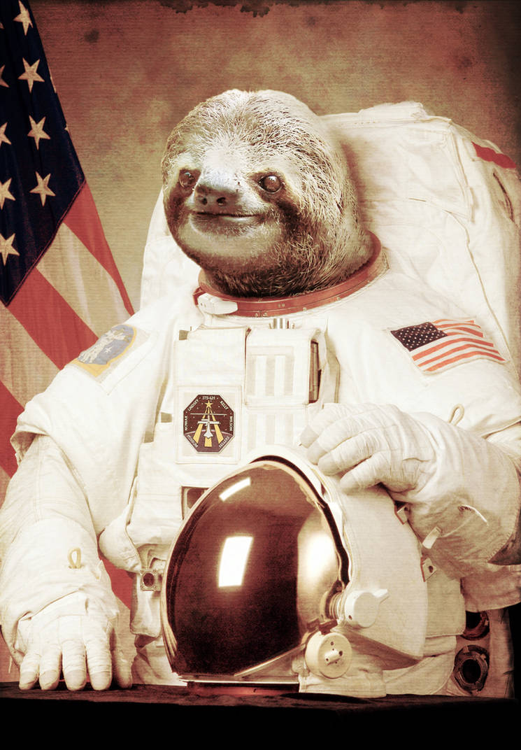 Sloth on the Moon by Bakus-design