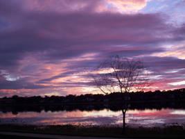 Purple Sky by Jazzman1989