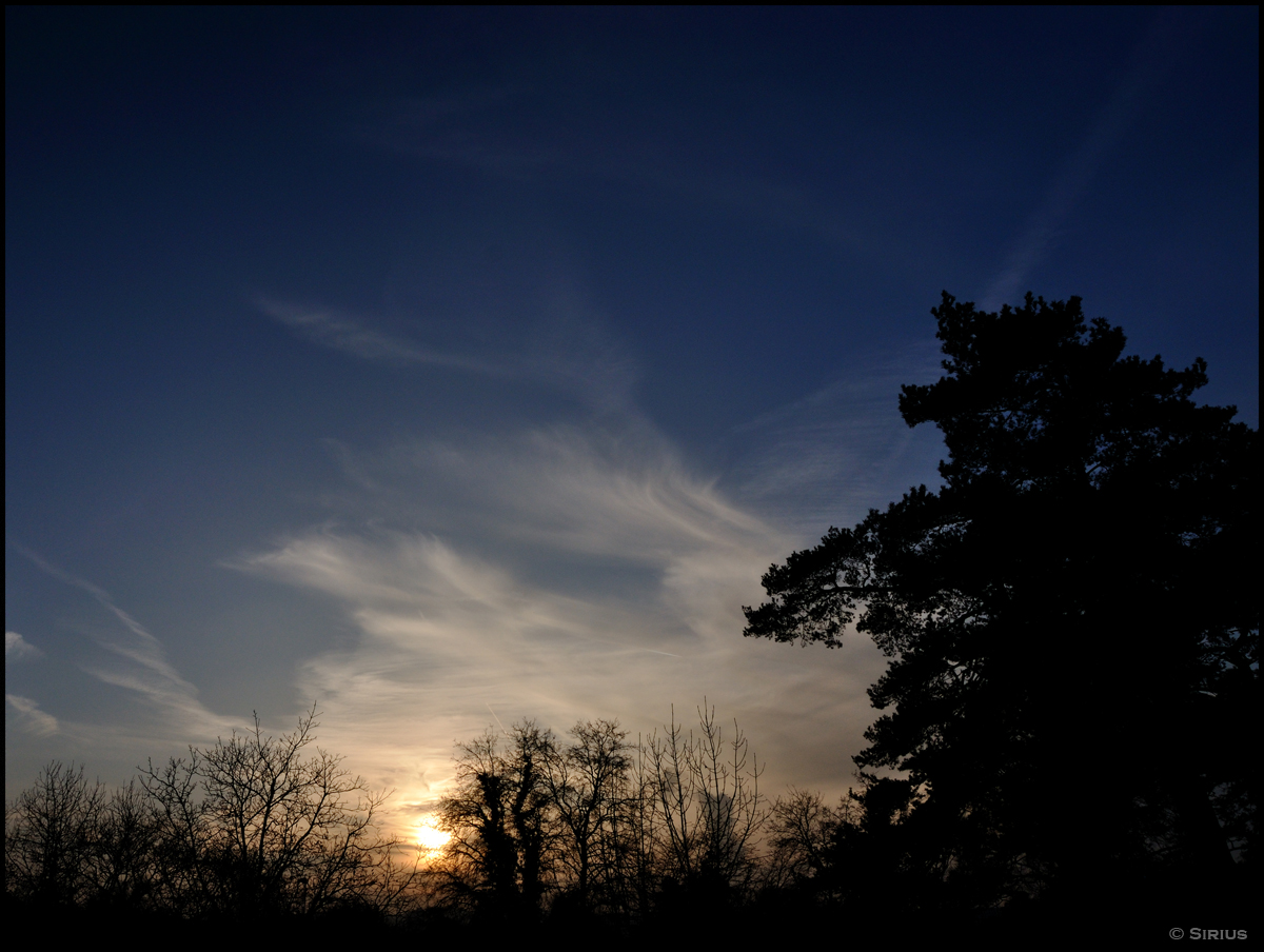 Evening Sky 7 by siriuscd