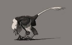 Decembird Day 5: Raptor by snailkites
