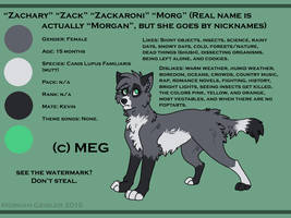 fursona reference-char sheet by TheMysteriousSilver