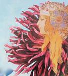 Crysanthemum Queen