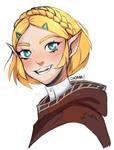 Zelda Breath of The Wild 2