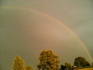 Rainbow by ILOVEANIME36798