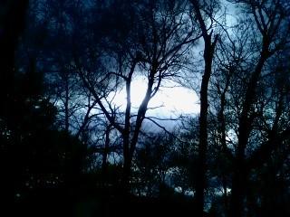 night sky by ILOVEANIME36798