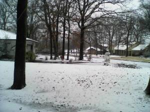 IT SNOWED - 2019 -