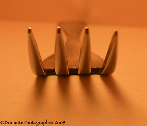 Tines by brunettephotographer