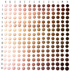 Skin Tone Swatches
