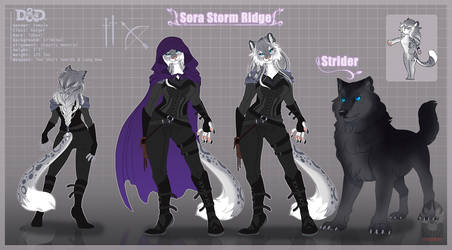 Sora Storm Ridge