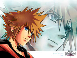 Sora FanArt - Kingdom hearts 3D wallpaper by MCAshe
