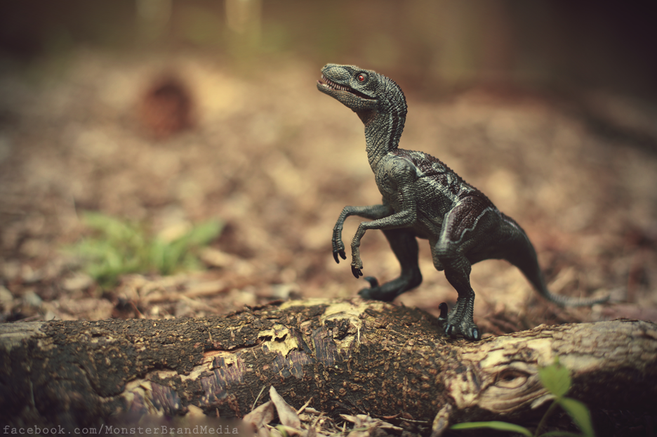 Day 91 - Raptor by MonsterBrand