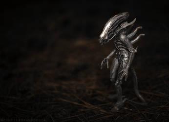 Proto Xenomorph by MonsterBrand