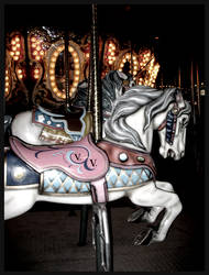 V.V horses