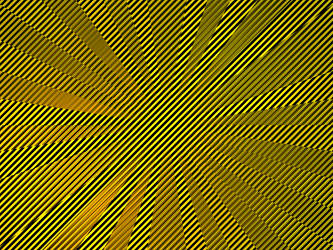 Bumblebee Timewarp by jayce76