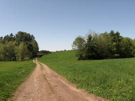 Dirt Road by WillowxHeart