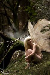 fairy tales by Arielle-Fox