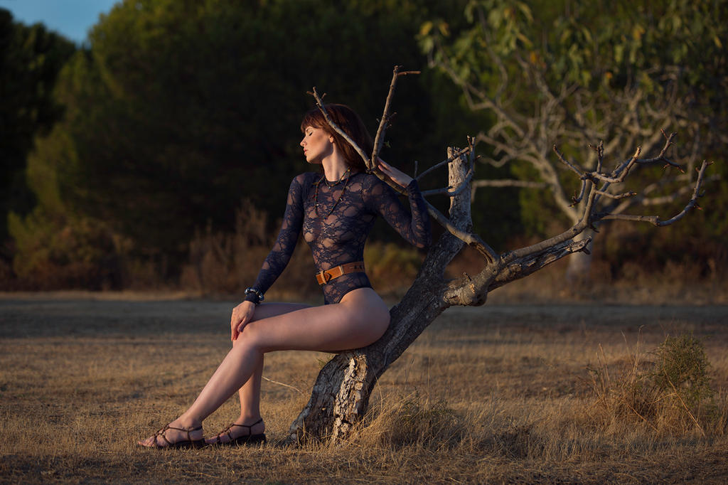 desert light by Arielle-Fox
