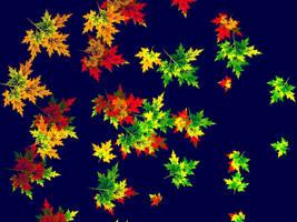 Maple Leaves in September