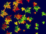 Maple Leaves in September by Lachesis88