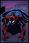 Spider-Man (Color)
