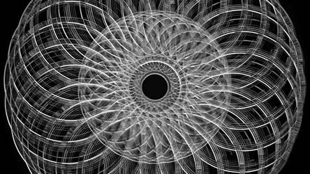 FotoMurthy Flower Power