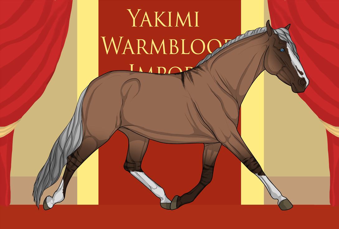 Yakimi Warmblood Import #1 by Weidenhof