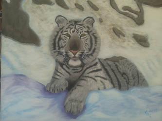 Tigre Gris by VeronicaRomero