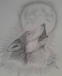Lobo Aullador by VeronicaRomero