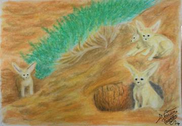 Zorritos del Desierto. by VeronicaRomero