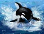 Orca by VeronicaRomero