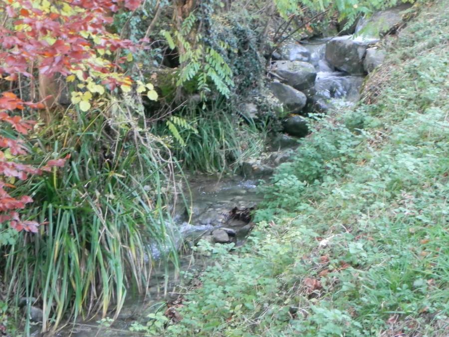 le petit ruisseau by angeloup