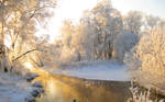 Winter Morning On River Wide