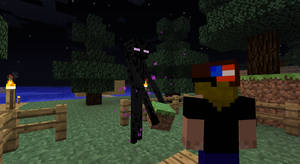 Minecraft Ender-man ._.