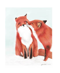 Foxes 1 by Enjoydotcom