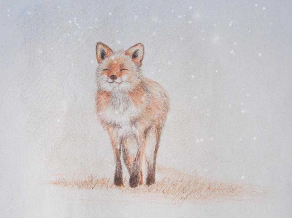 Fox in the snow by Enjoydotcom
