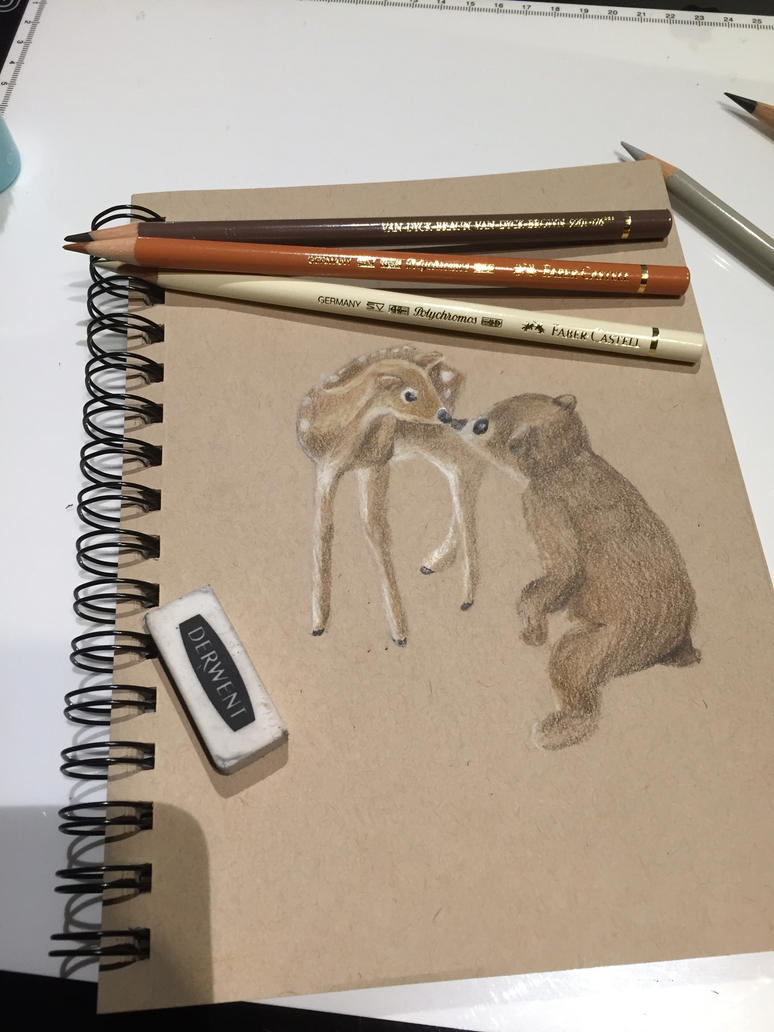Deer and bear by Enjoydotcom