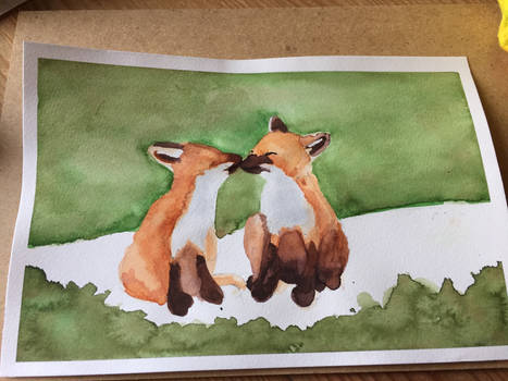 Two foxes in watercolor