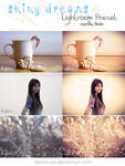 LR preset: Shiny Dreams - Vanilla Town